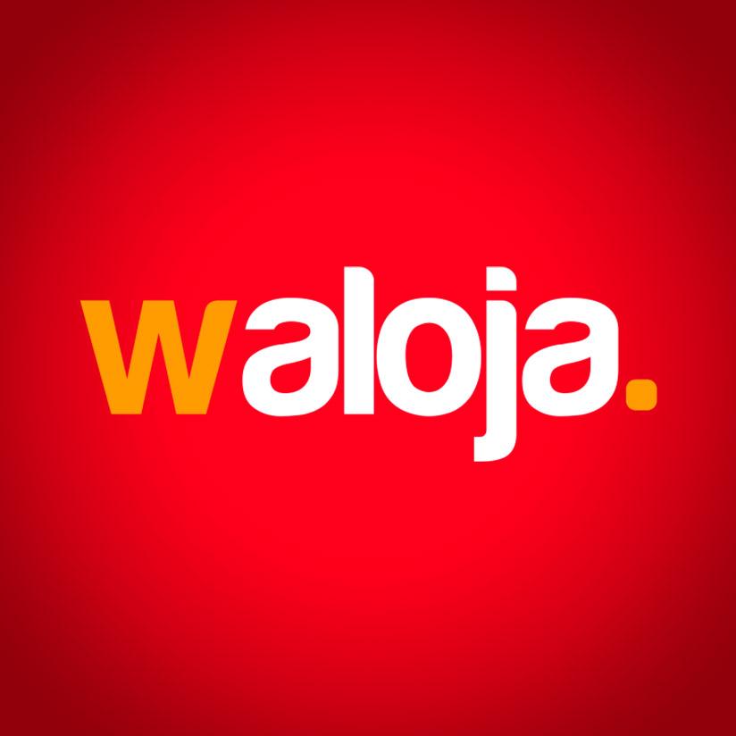 Waloja Hosting Dominios Correos Diseño Web
