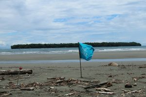 beach-clean-up-volunteering-colombia_ecopazifico-5